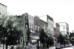 Downtown Vines BW