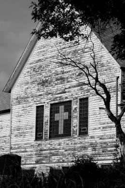 Church Tree BW
