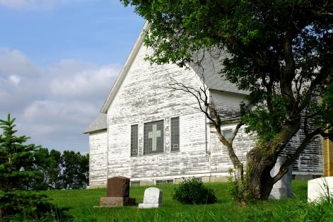 Church Tree larger